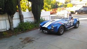 Shelby AC Cobra The Snake