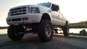 Ford F-Series White lightin
