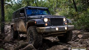 Jeep Wrangler BIG CAT