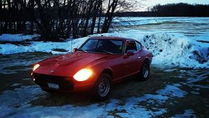 Datsun 280Z Dragon lady