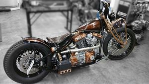 HD FXST 100th Anniversary Copper