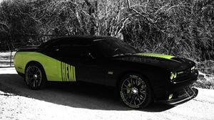Dodge Challenger SRT8 Bathsheba Or Sheba