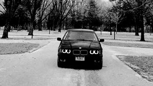BMW 3 Series Sedan Bernie the Beamer