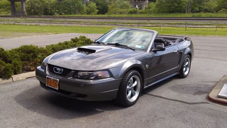 Ford Mustang Shadow