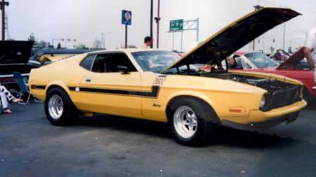 Ford Mustang Mach 1 THE STING