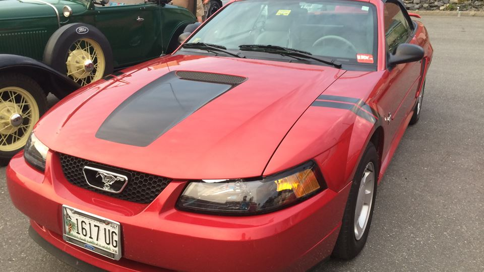 Ford Mustang War Horse