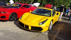 Southern exotic car show